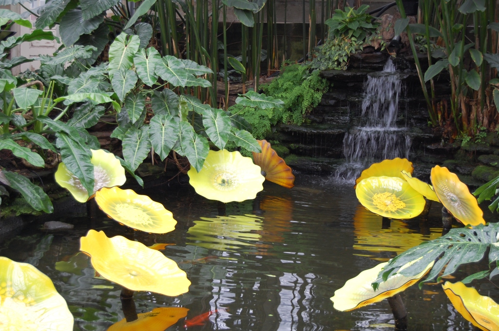 Garfield Park Conservatory Chihuly Glass