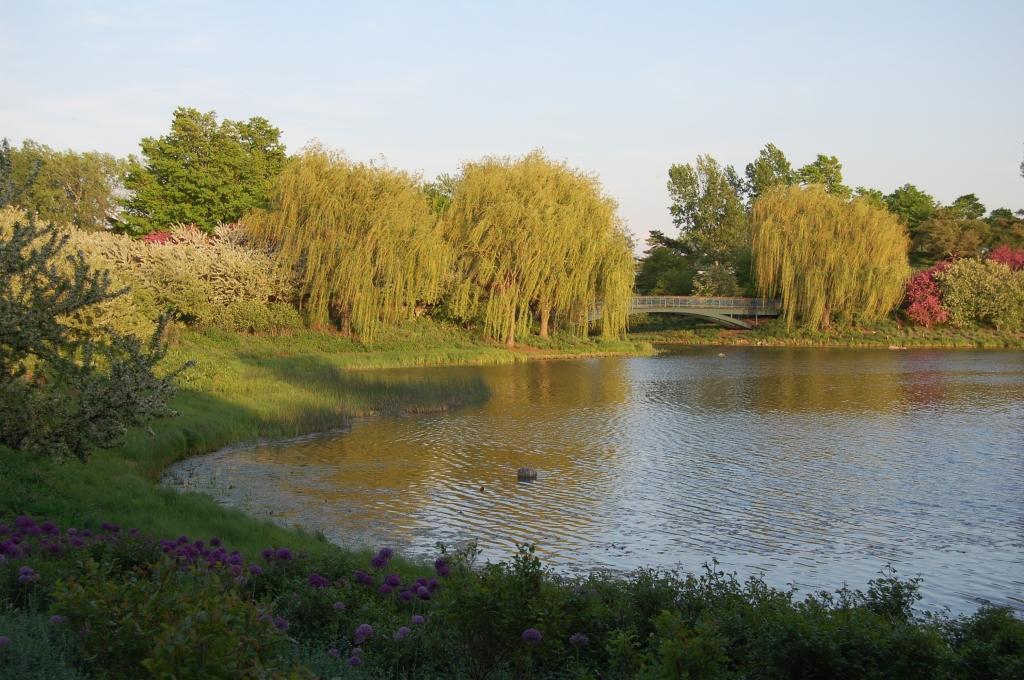 Chicago Botanic Garden, Evening Island