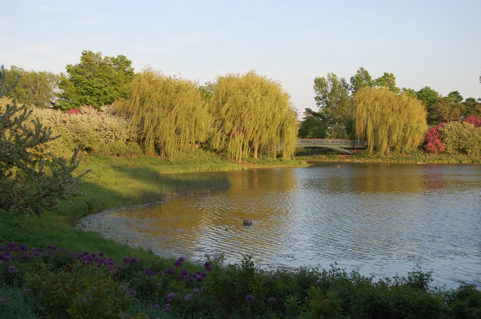 Chicago Botanic Garden, Evening Island