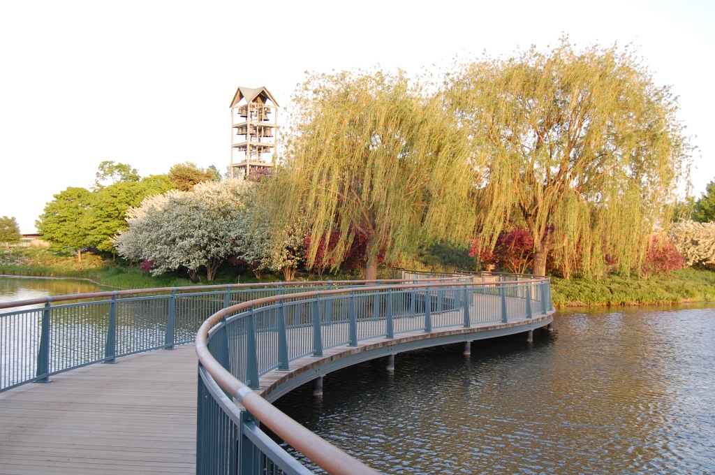 Chicago Botanic Garden, Crabapple blossoms, Evening Island