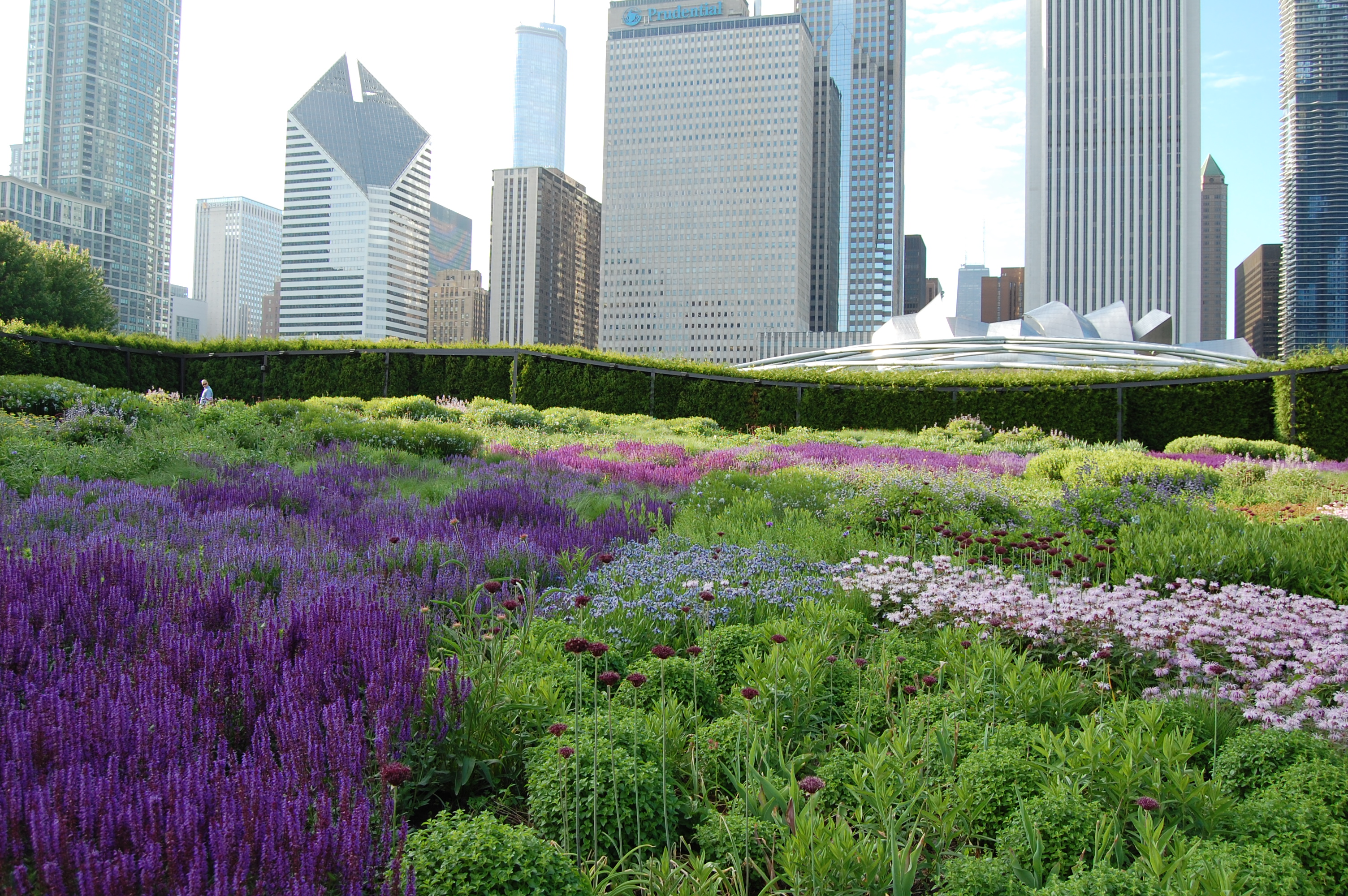 Chicago s lurie garden gardeninacity for Landscape design chicago
