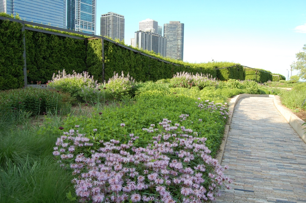 The garden is bordered to the west and north by an evergreen hedge. To the south is the Chicago Art Institute.