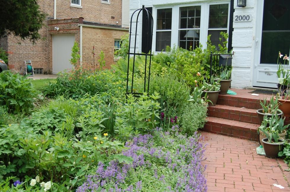 Garden tuteur