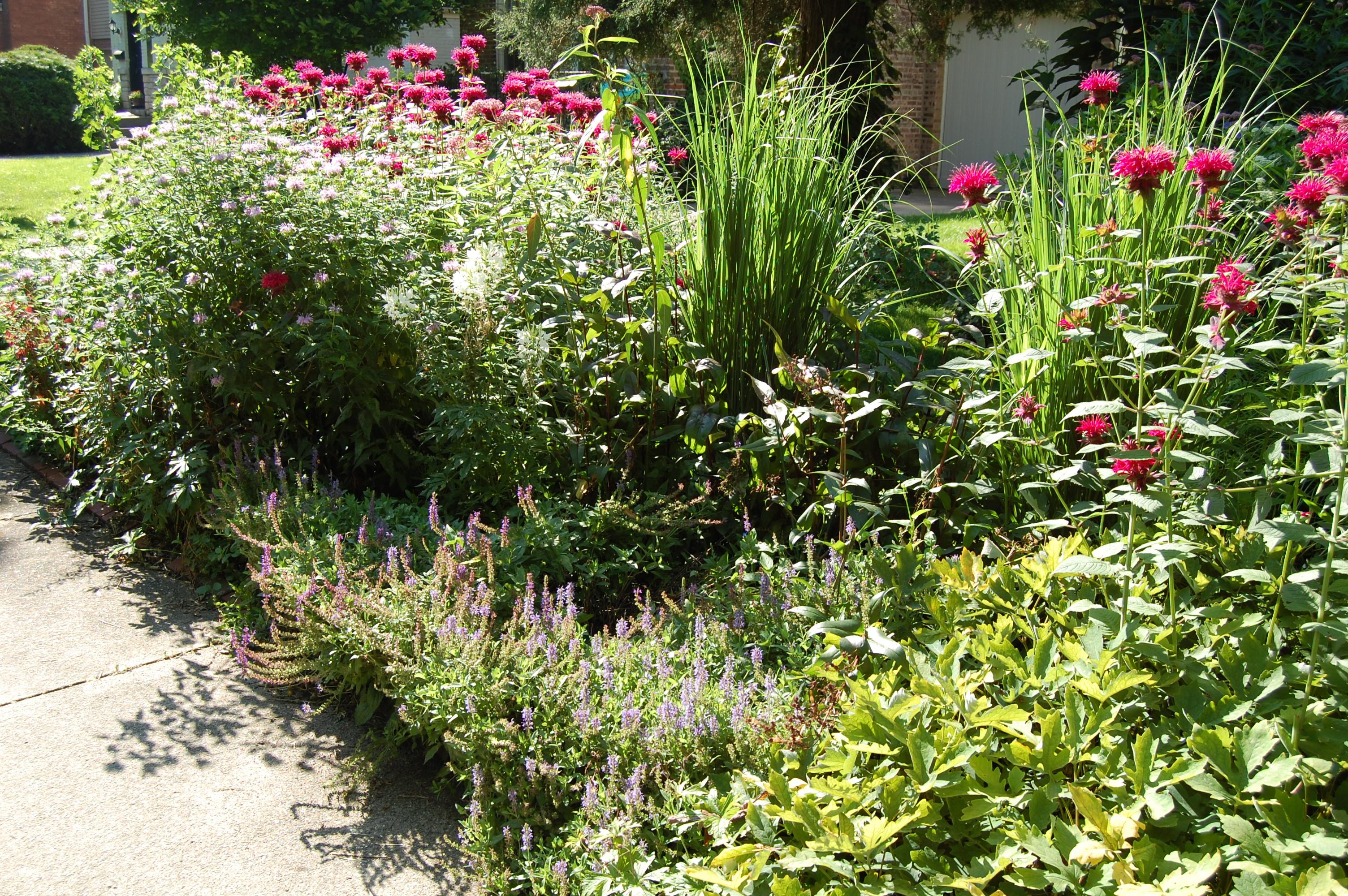 Garden Of Words German Stream