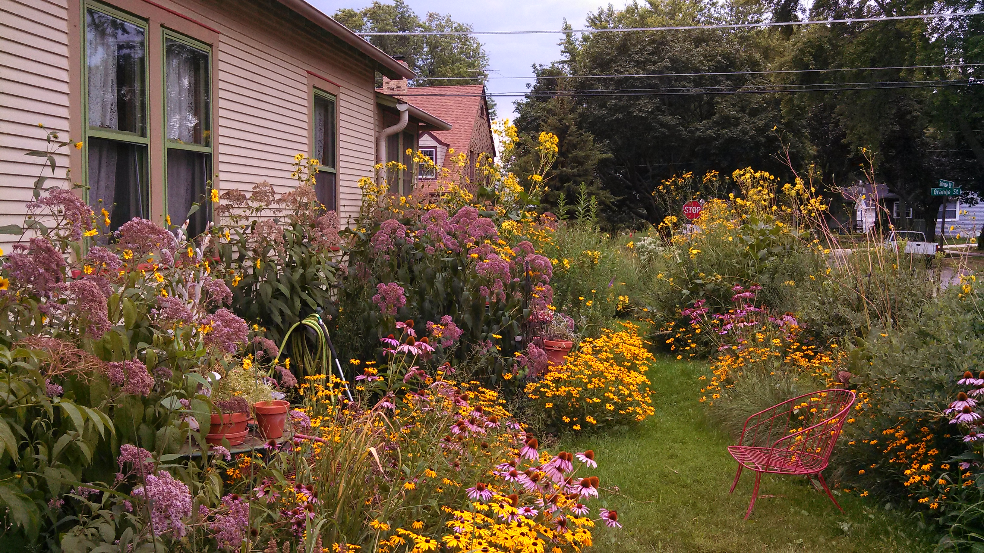 A Visit To The Garden Of Pat Hill – gardeninacity