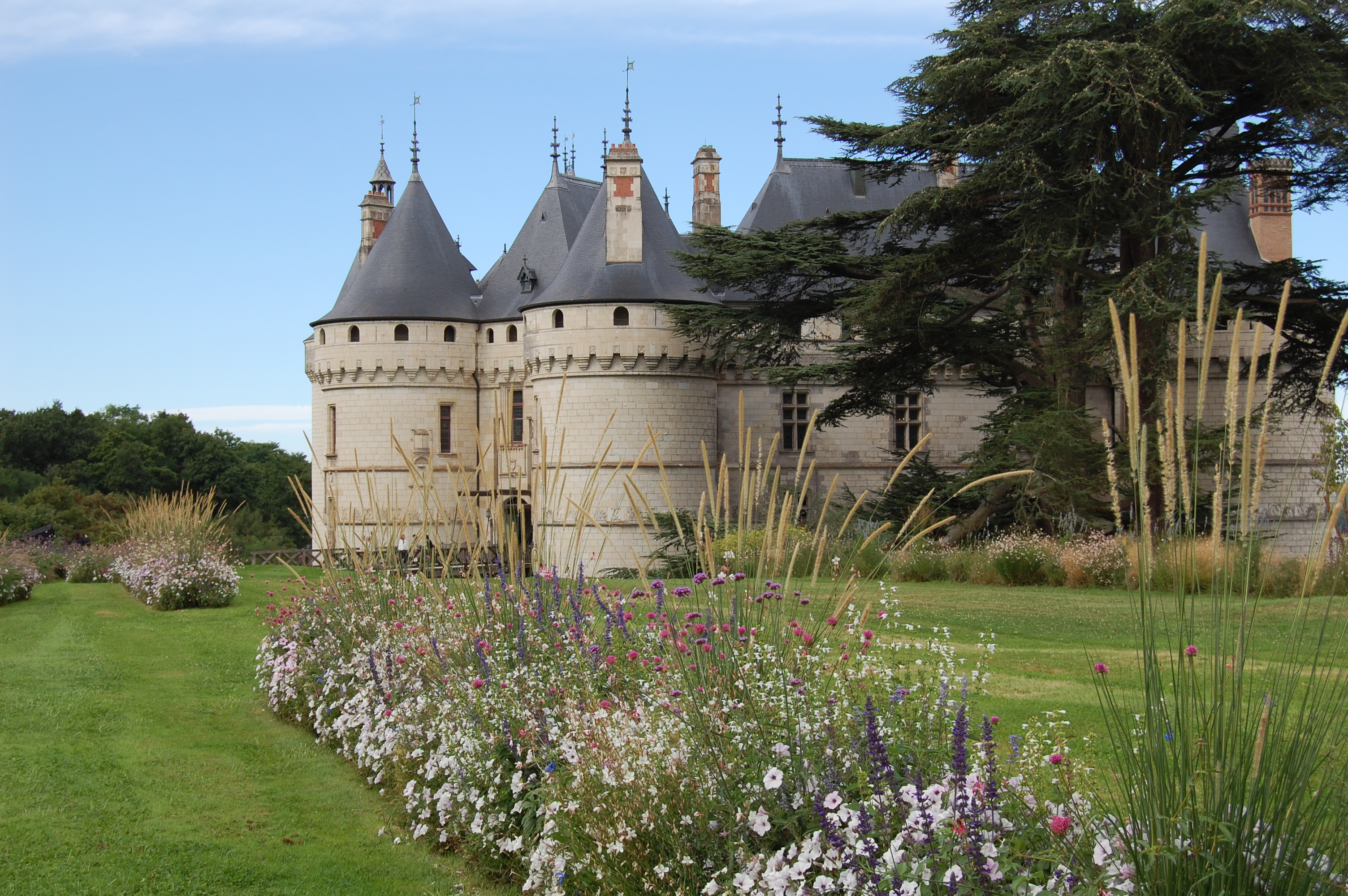 Populaire Ignoring 'No Entry' Signs at Chateau de Chaumont – gardeninacity CY42