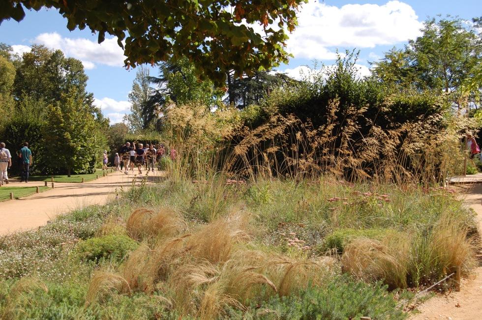 Landscaping between the display gardens.