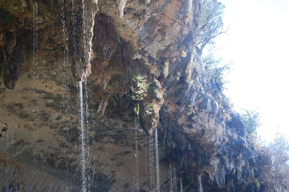Hamilton Pool stalactites