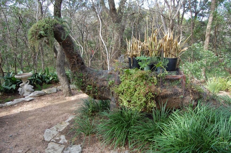 Zilker Botanic Garden