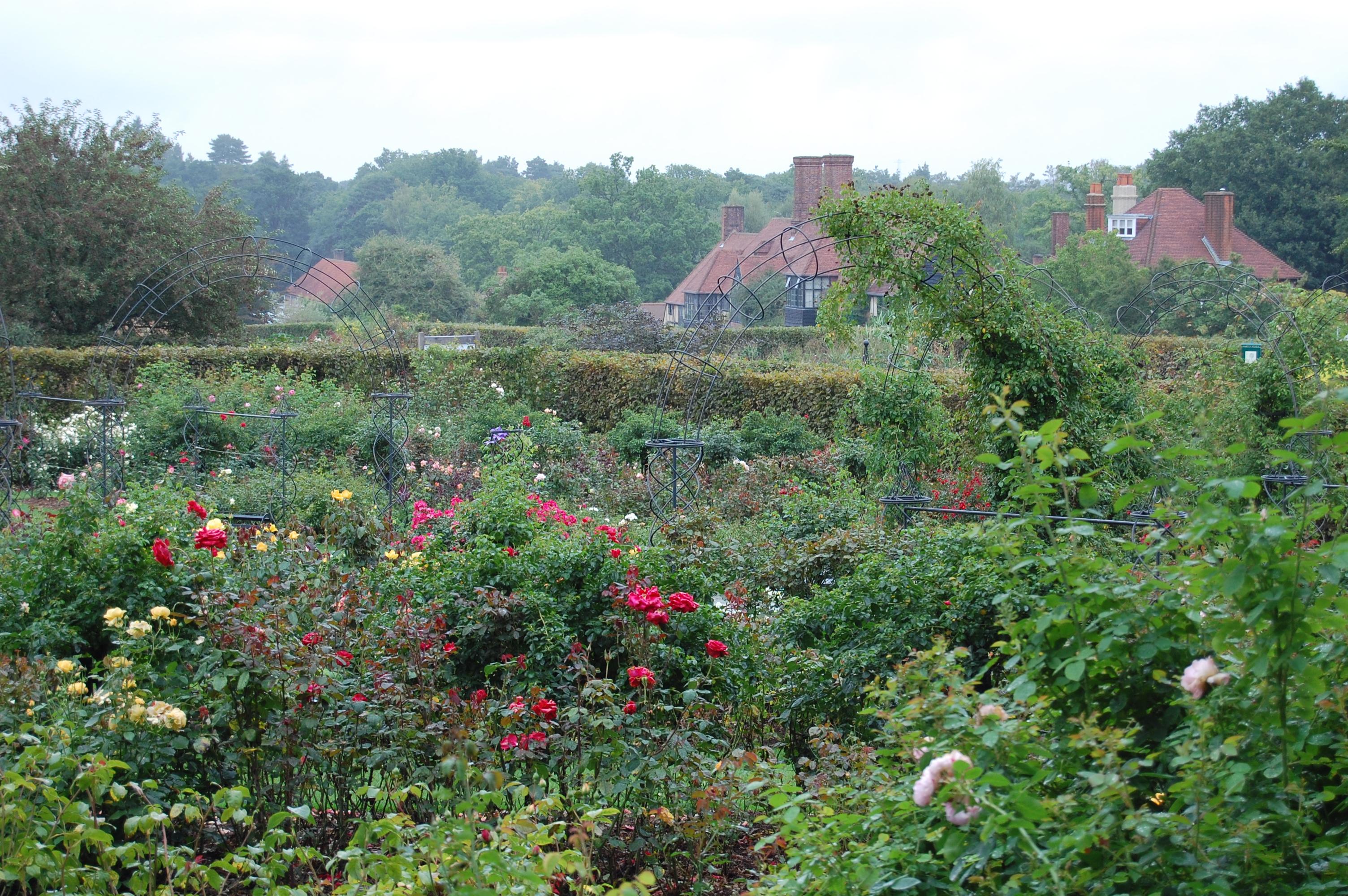 RHS Wisley, Part 1 - gardeninacity