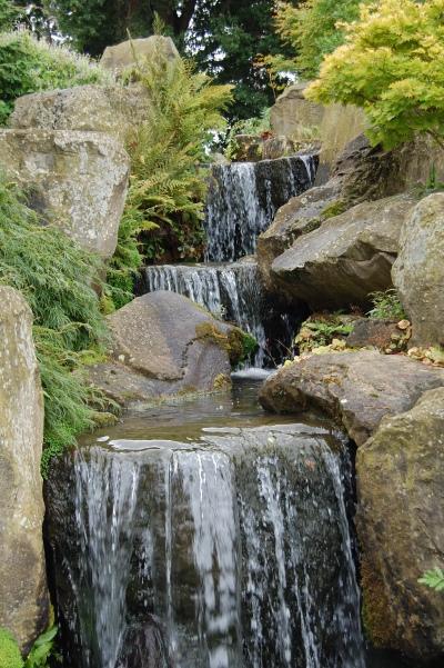 2013-09-13 08.46.36 RHS Wisley rock garden