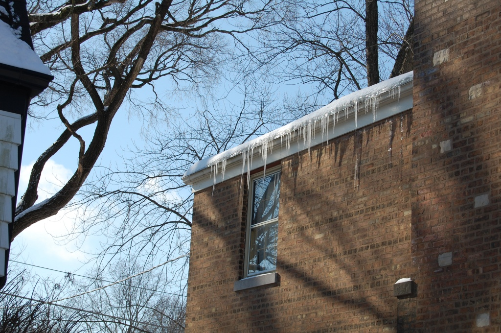 2014-02-09 12.23.48 icicles