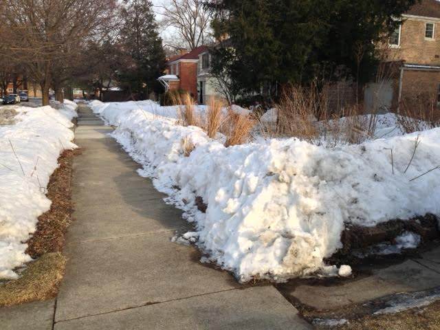 The sidewalk in front of our house, February 28th.