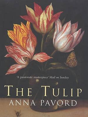 the tulip 2