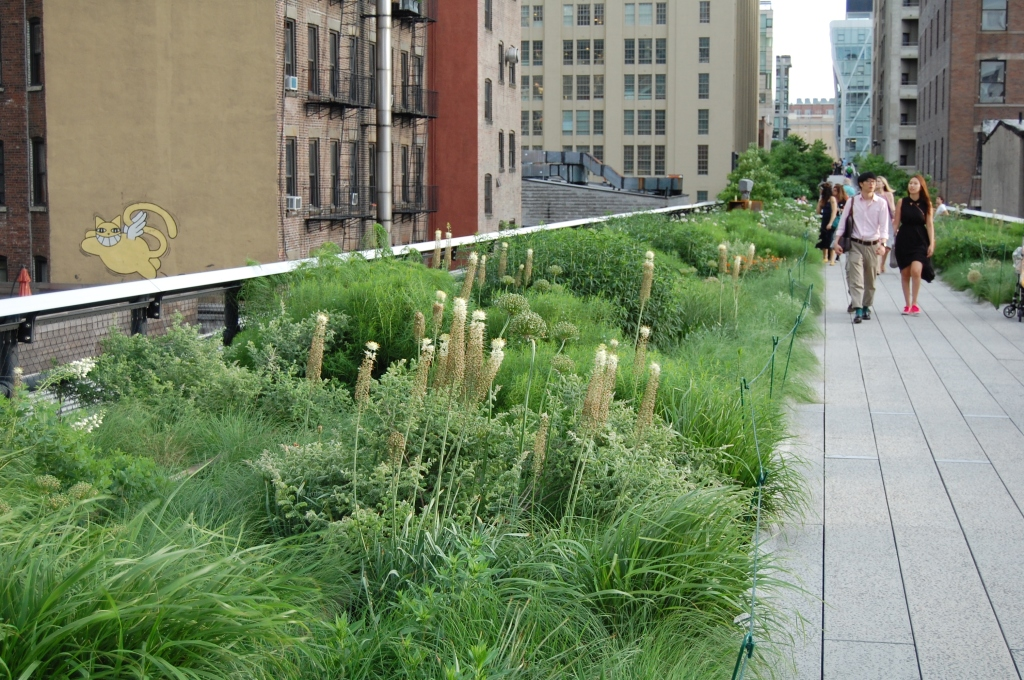The High Line in New York City is one of the gardens Piet Oudolf helped design.