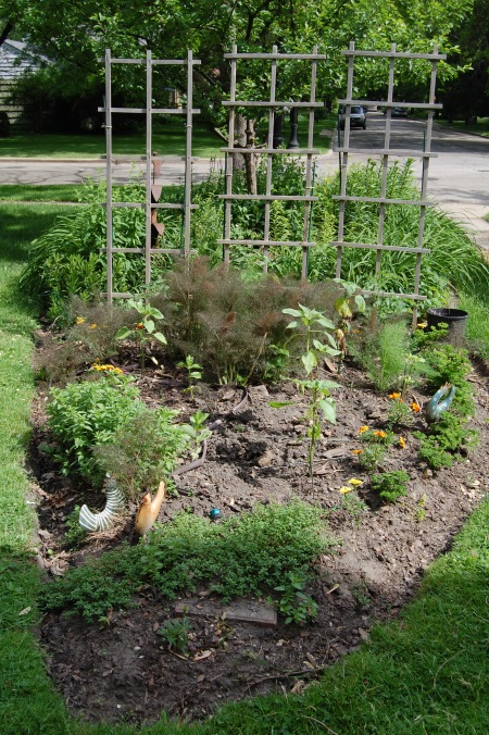 An overview of the Mostly Edible Garden.