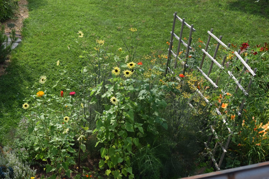 The Cutting and Edibles Bed.