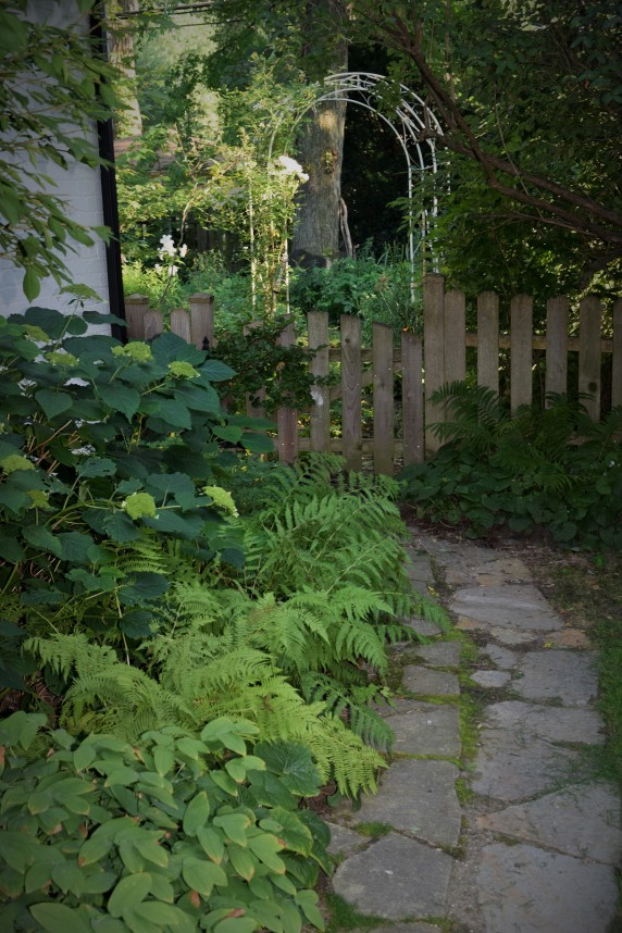 Path to the back garden