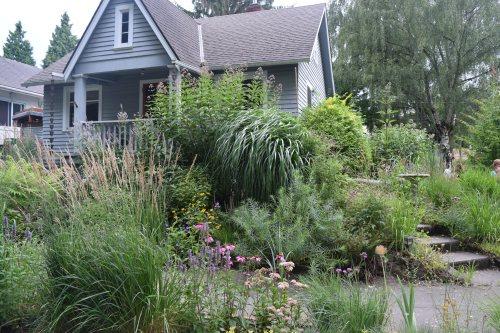 Rhone Street Gardens