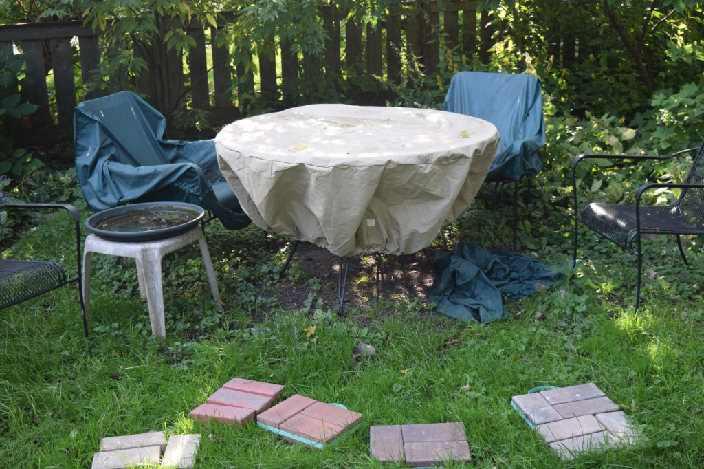Before the patio. Those are paver samples in front of the table. Everything is covered, of course.