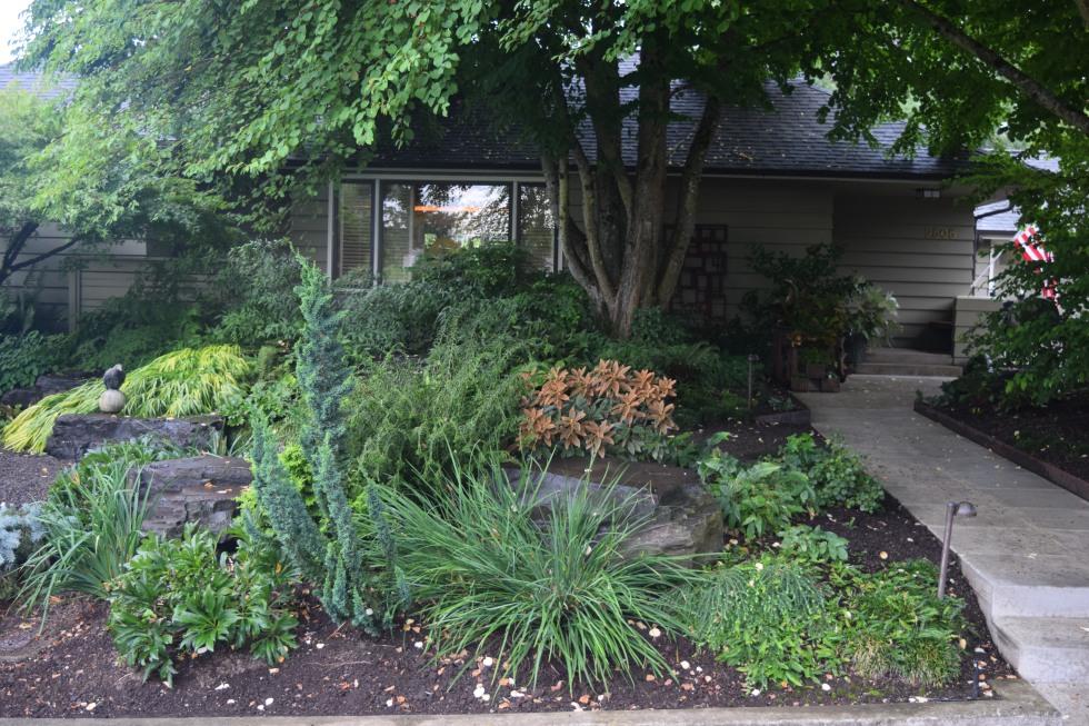 Floramagoria's front garden