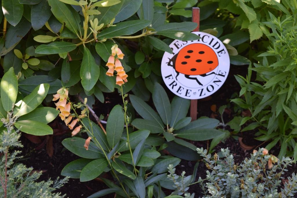 2014-07-12 15.20.58 chickadee gardens