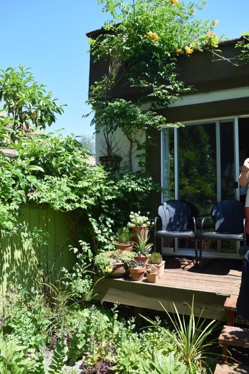 2014-07-12 15.30.42 chickadee gardens
