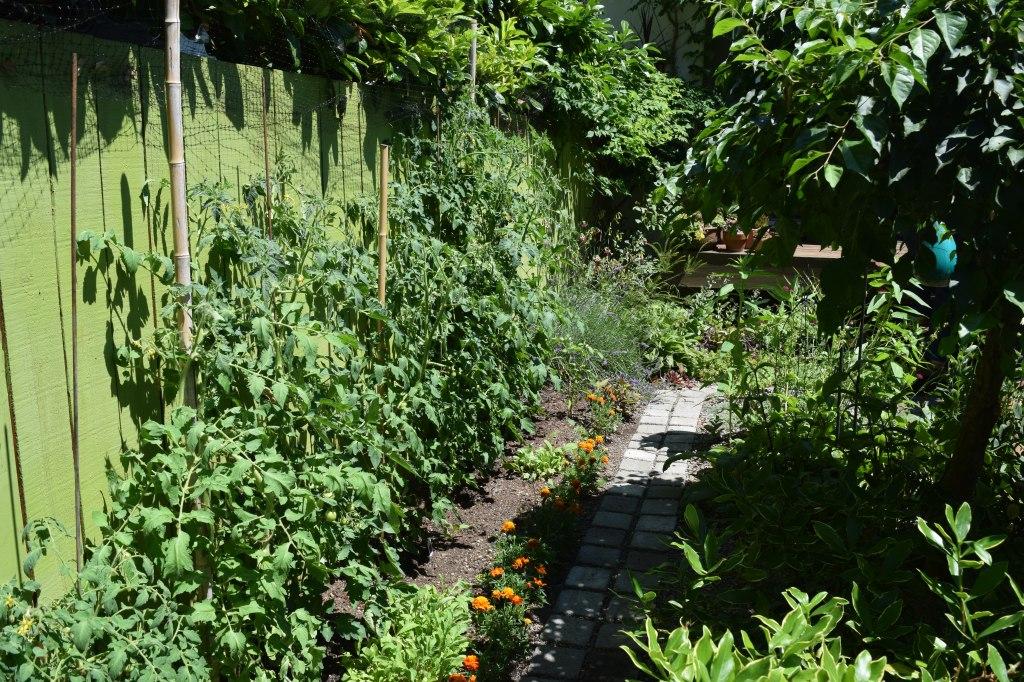 2014-07-12 15.34.42 chickadee gardens