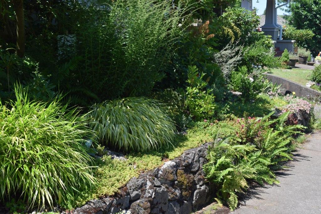 2014-07-12 15.45.23  chickadee gardens