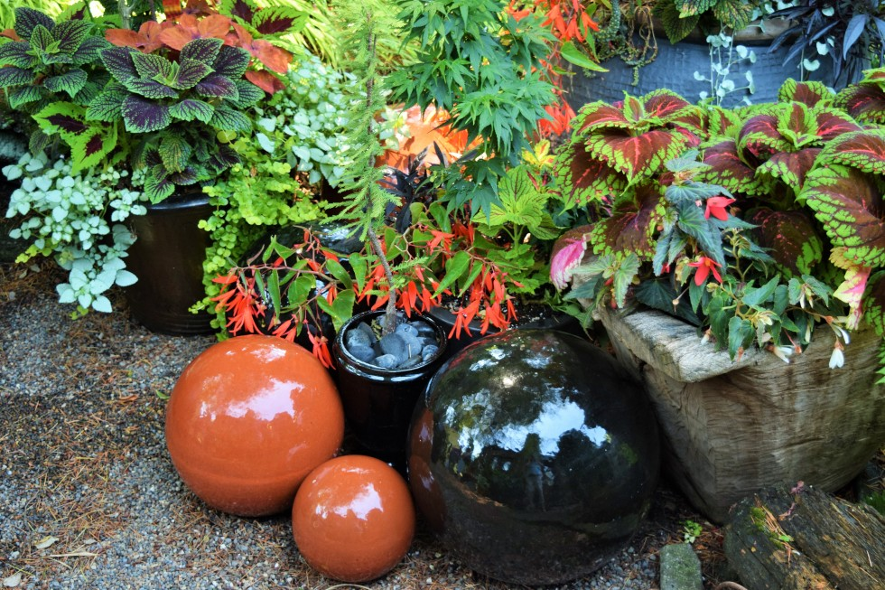 This tableau makes me consider the possibilities of bowling balls as garden art.