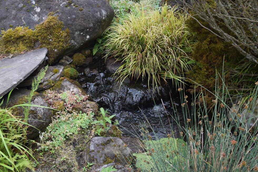 A babbling brook.