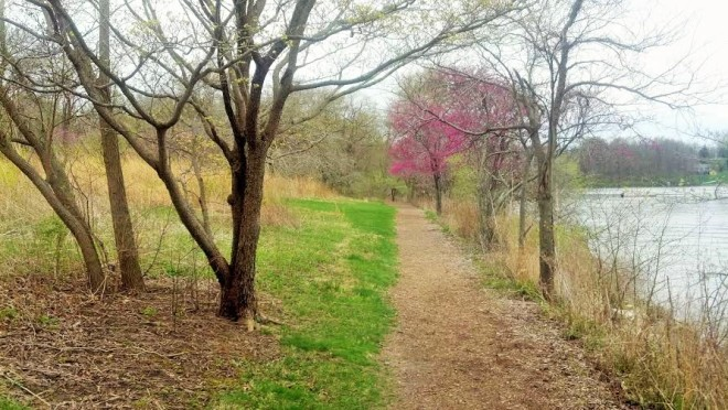A path along the shore of Lake Springfield, which was created in the 1930s by damming what was then Sugar Creek.