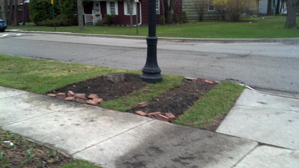 Turf removal complete. Those pavers are for making an edge along the  sidewalk.