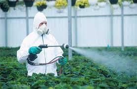 fungicide