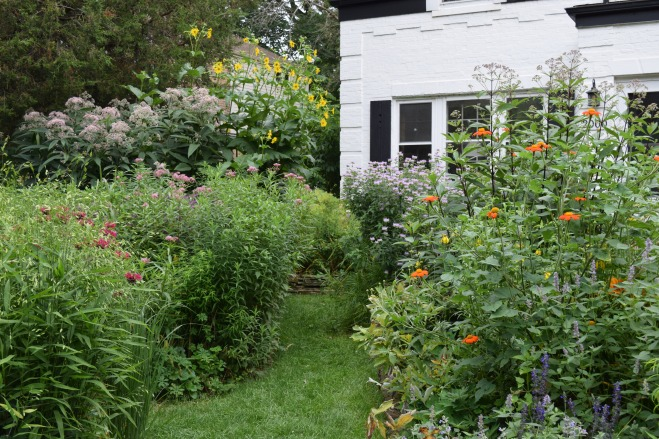 The path between the Front Island Bed and the Driveway Border