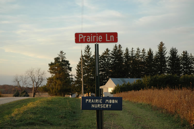 Photo from www.prairiemoon.com.