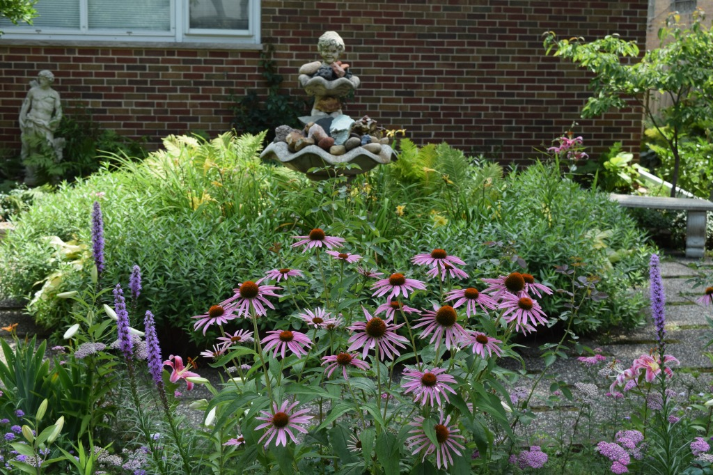 Veronica's garden, see from the sidewalk.