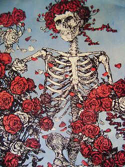 grateful dead roses