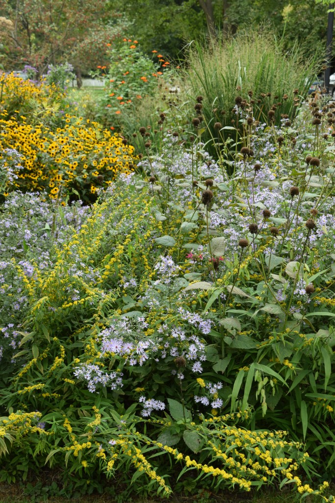 The front garden in late September.