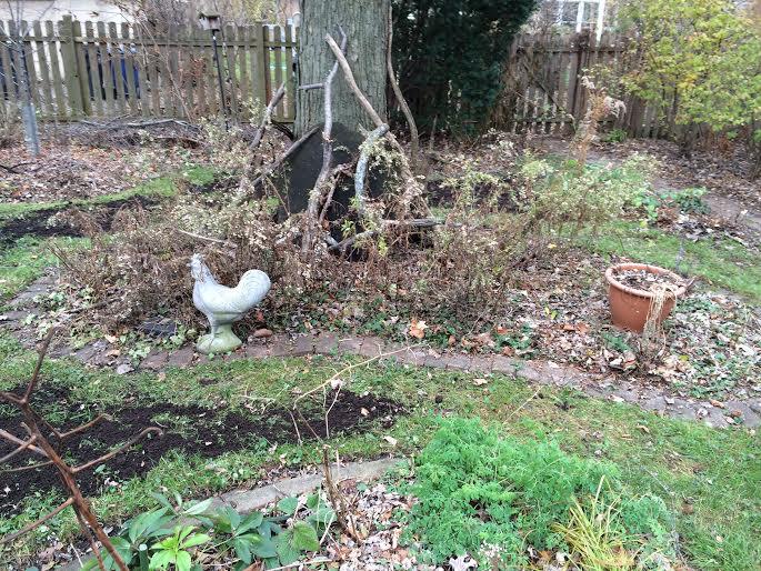 back garden compost 3