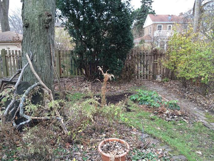 back garden compost 4