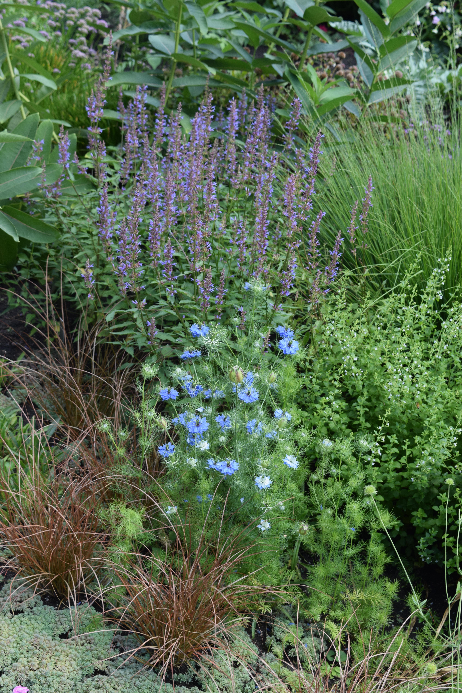 Noerenberg Memorial Garden gardeninacity