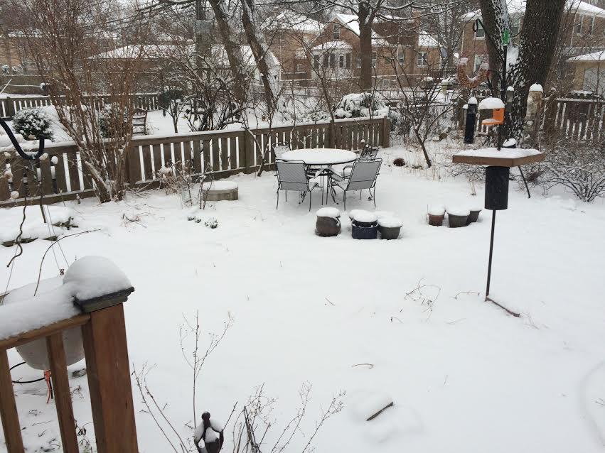 march snow 2