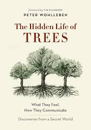 trees book2